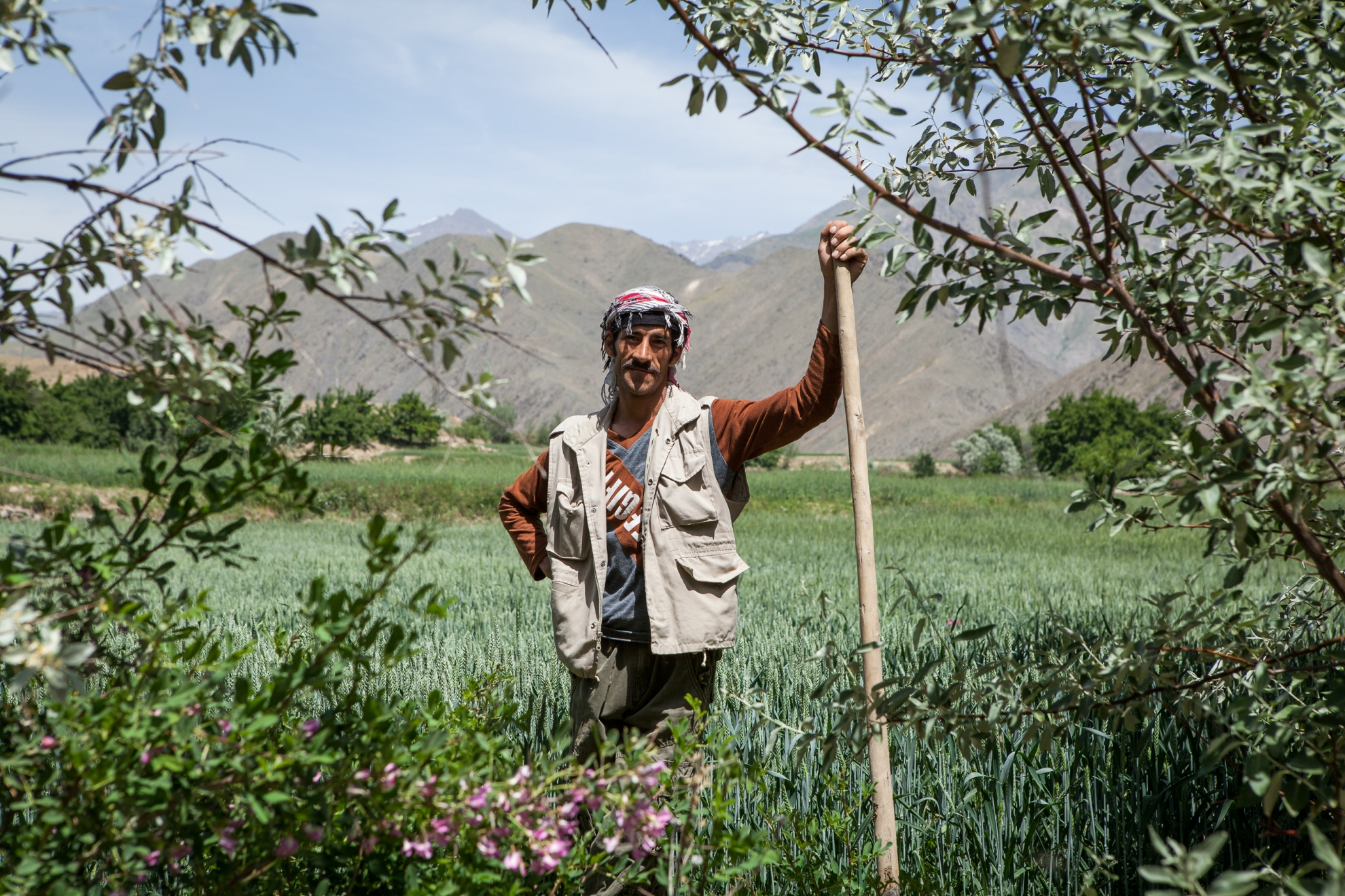 The farmer in this photo had his field demined three years ago. Now he can cultivate the land and sustain his family. Photo: Danish Refugee Council/Erick Gerstner