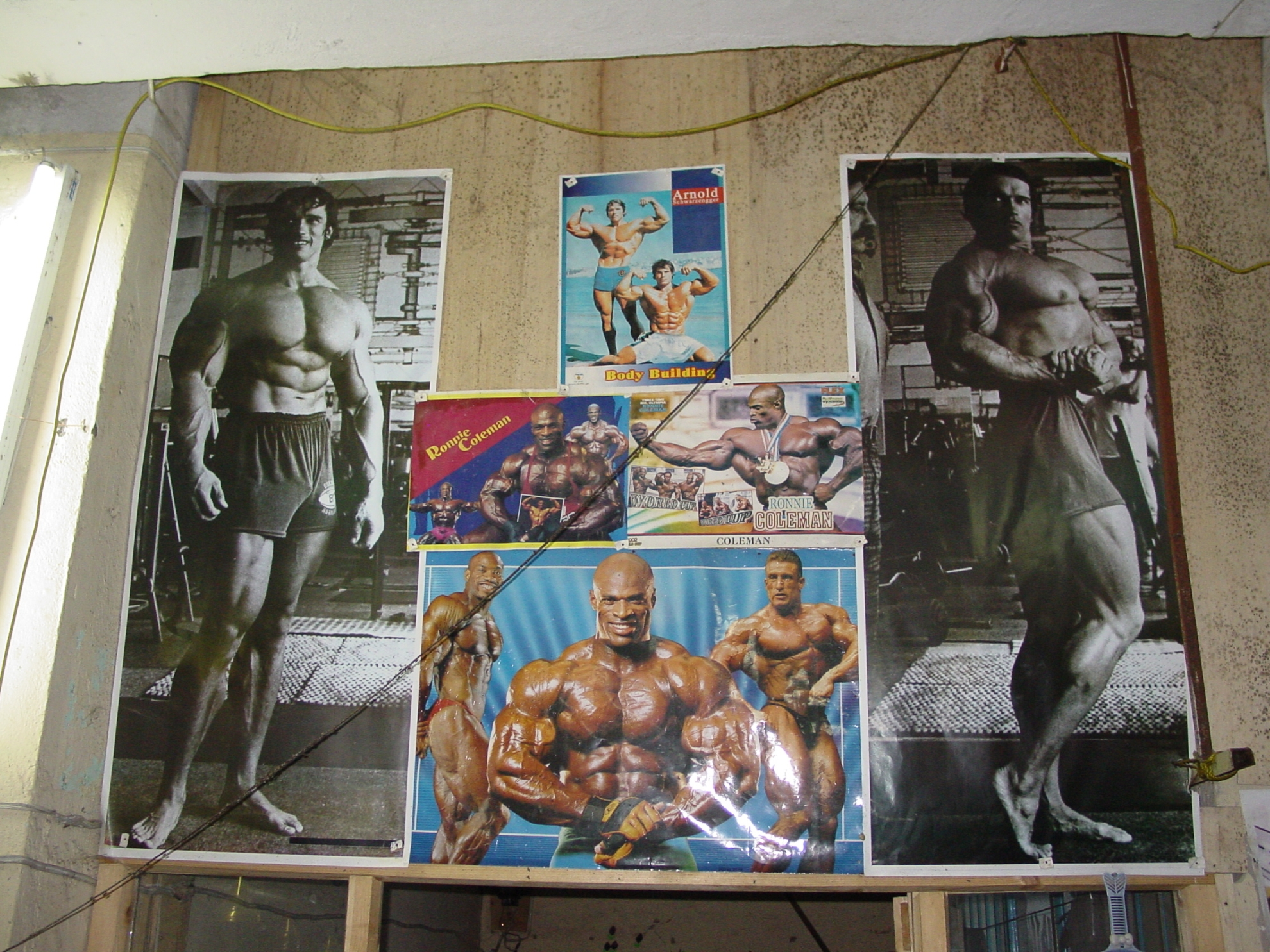 Arnold Schwarzenegger is a big name among Afghan bodybuilders. Photo: Jens Kjær Jensen, 2003