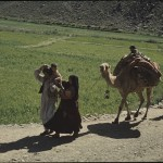 A family from the Jalalkhel tribe trekking through Hazarajat. Photo: Jean Bourgeois, 1968