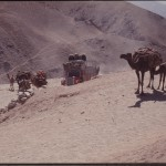 Trucks have long since outperformed camels. That is one of the reasons why many trading nomads have given up on their traditional lifestyle. Photo: Jean Bourgeois, 1971