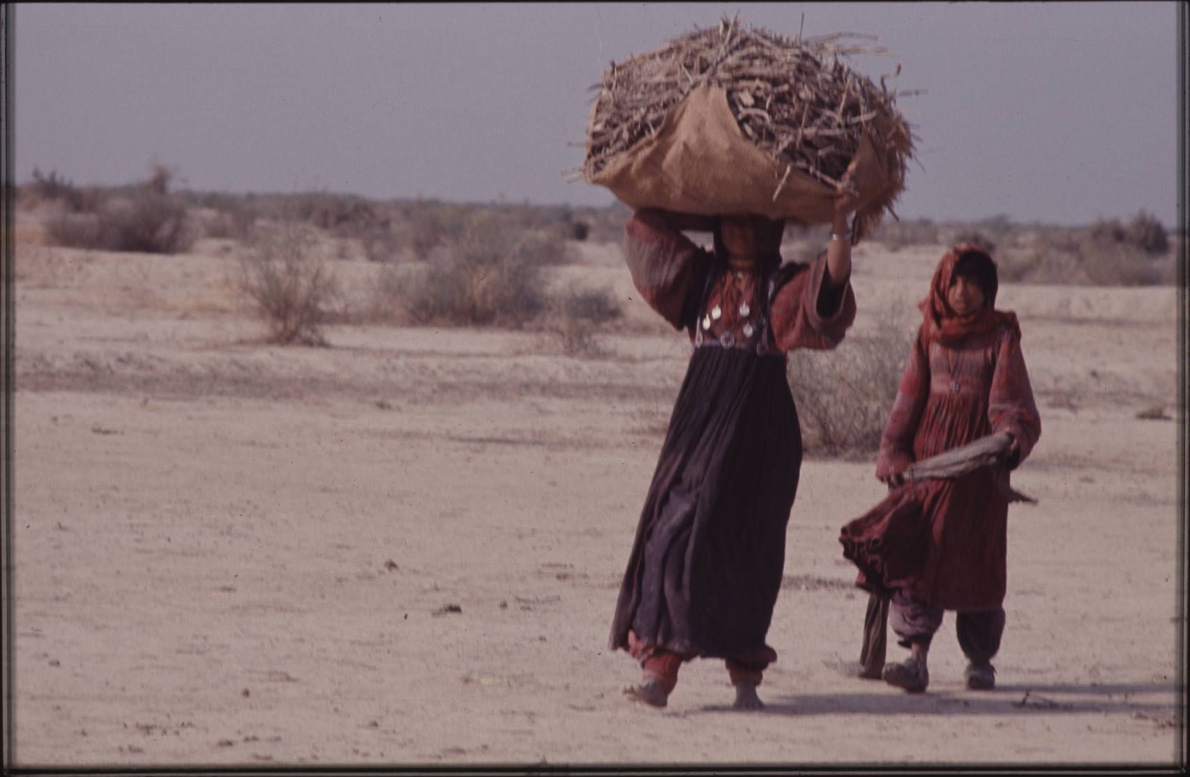 Collecting firewood for cooking. The women are always working and there is rarely time for a break. This photo was taken close to their winter camp in Pakistan. Photo: Jean Bourgeois, 1971