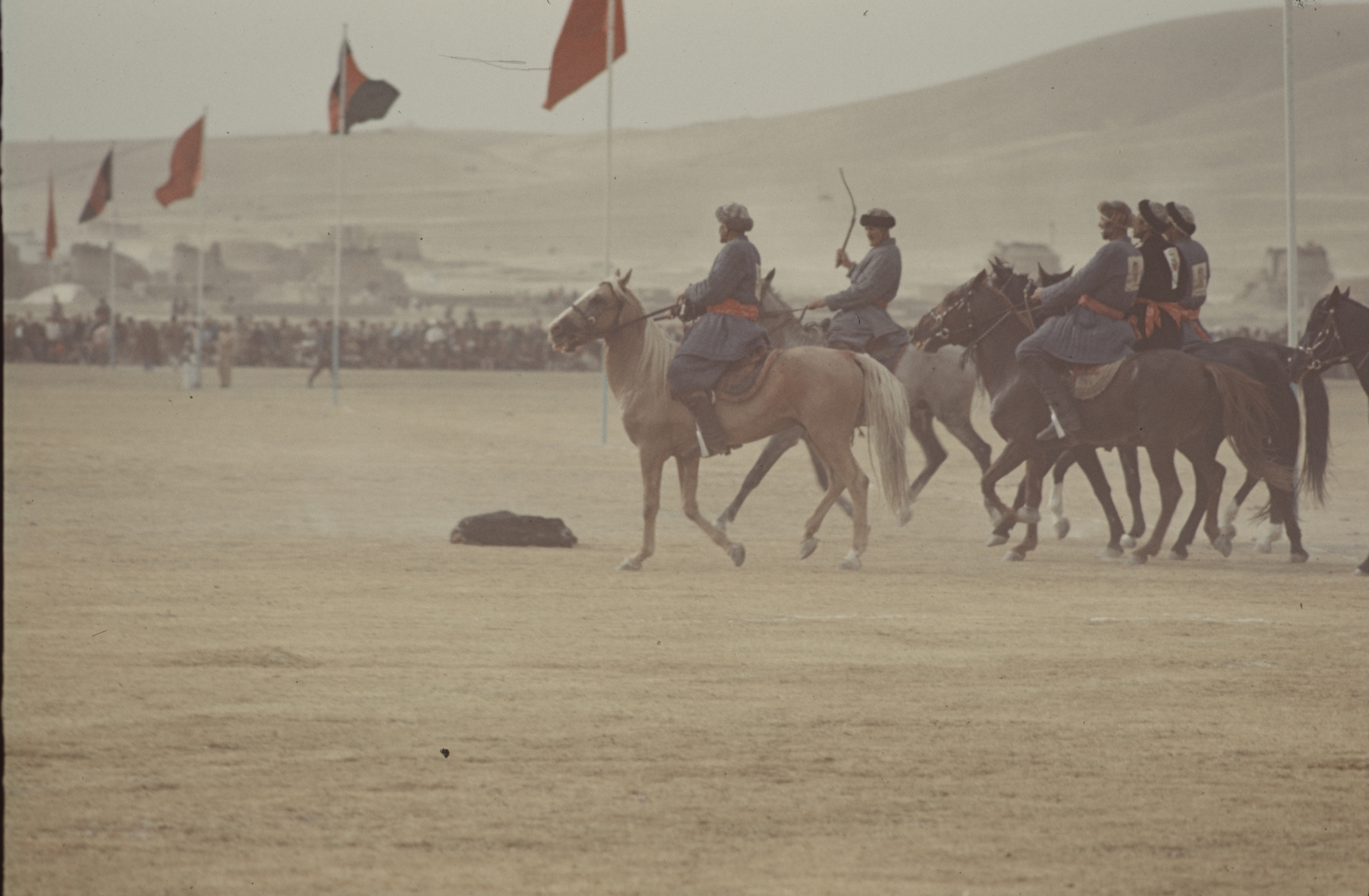 Winning a buzkashi match is a matter of great prestige, and often also of generous prize-money. Photo: Jean Bourgeois, 1969