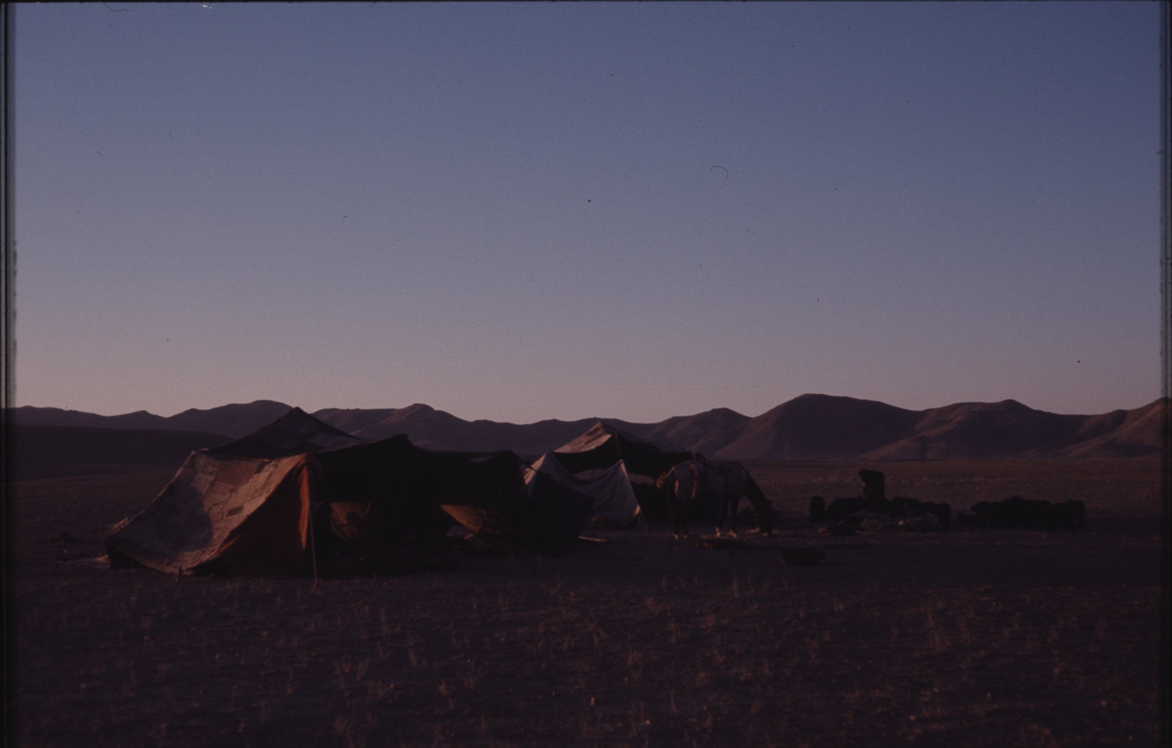 Darkness falls over the camp. There are several watchdogs in the camp to keep away the wolves. Photo: Jean Bourgeois, 1971
